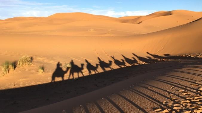 Dukettes Marrakech.jpg